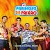 Faringes da Paixão - CD Vol3 2014