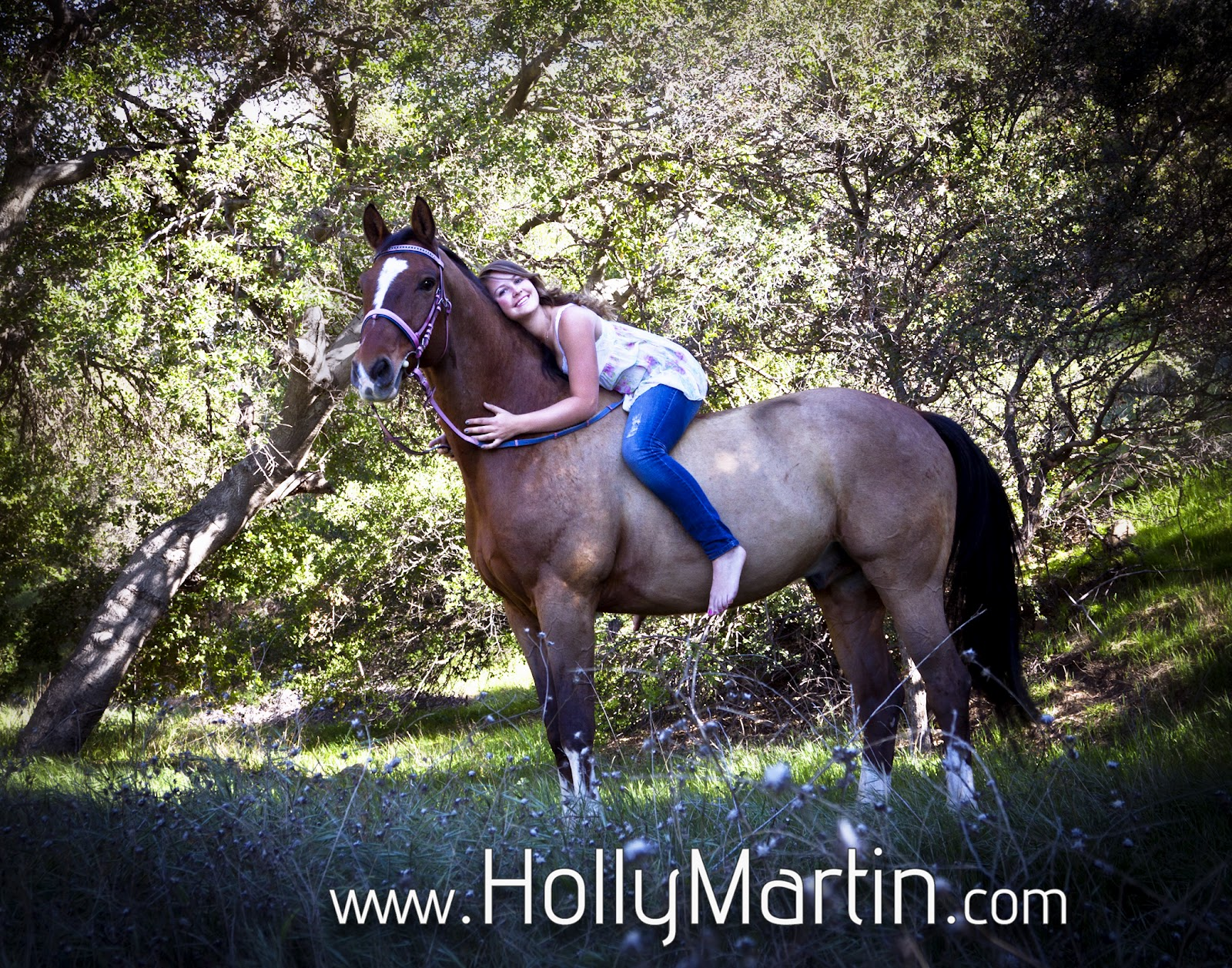 how to become a professional hunter rider
