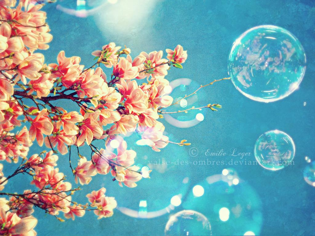 http://3.bp.blogspot.com/-rMmMD4Oglz0/T3FmF3opHoI/AAAAAAAAANM/_zxGS05mPcA/s1600/Spring_Is_Near_Wallpaper_sy19d.jpg