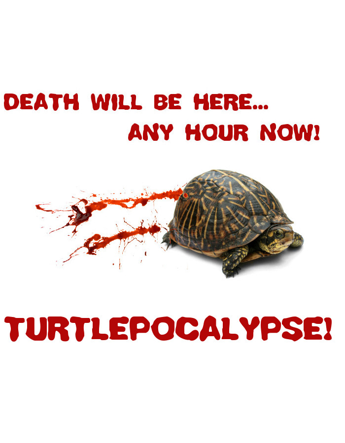 Now Showing - Turtlepocalypse