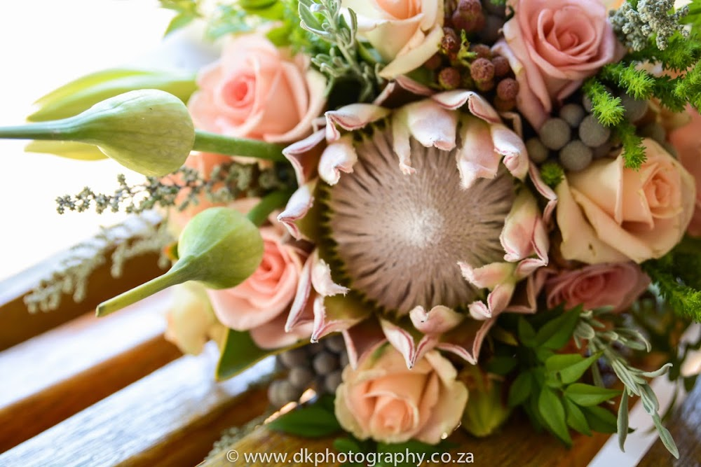 DK Photography DSC_3432 Susan & Gerald's Wedding in Jordan Wine Estate, Stellenbosch  Cape Town Wedding photographer