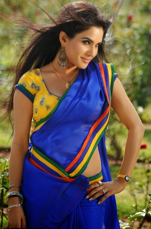 Actress Kavya Singh Blue Saree Photos