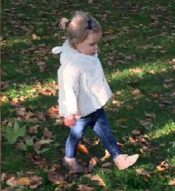 Walk in the park! - Princess Madeleine of Sweden has shared a new photo of her daughter Princess Leonore with a message on her official Facebook page
