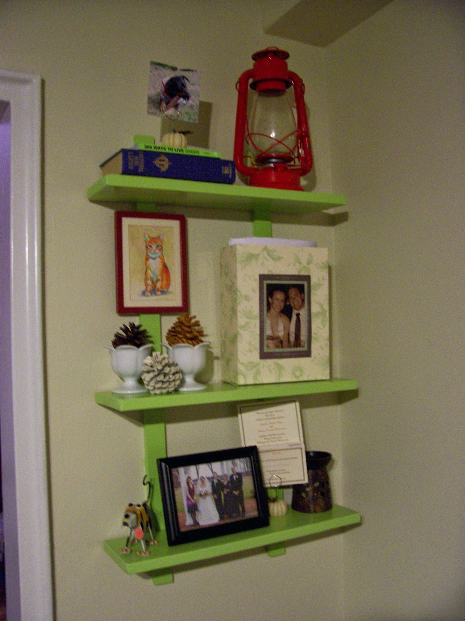 green ideas picture shelves