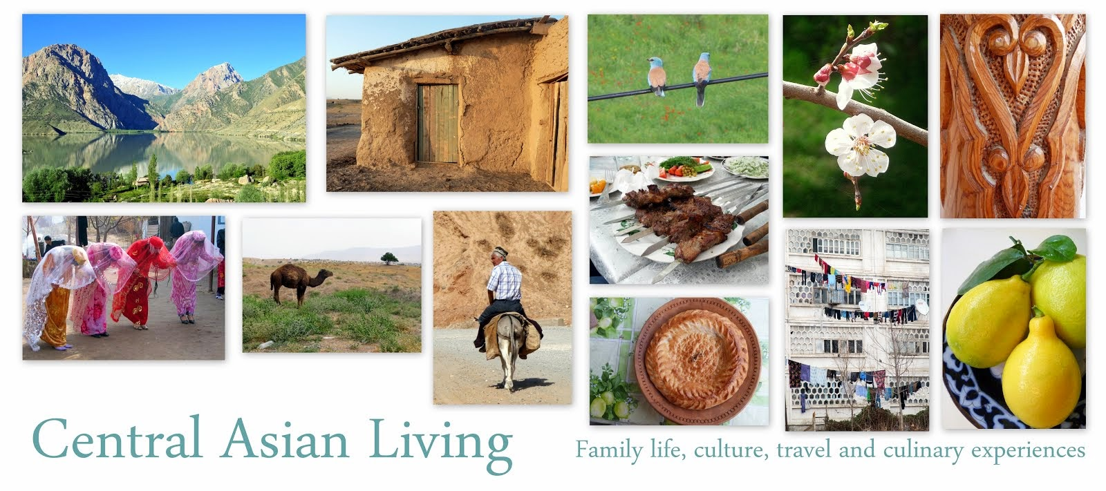 Central Asian Living