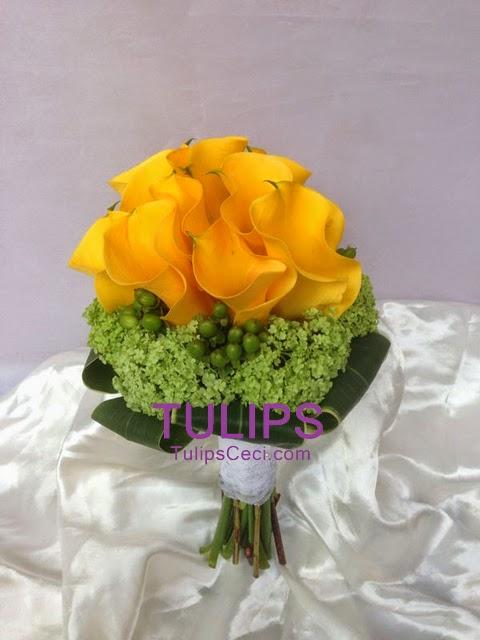 黃馬蹄蘭花球黃色可以好特別的
