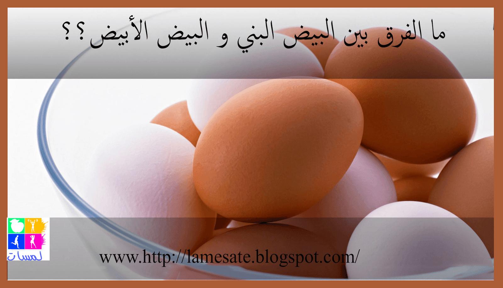 ما الفرق بين البيض البني و البيض الأبيض ؟؟
