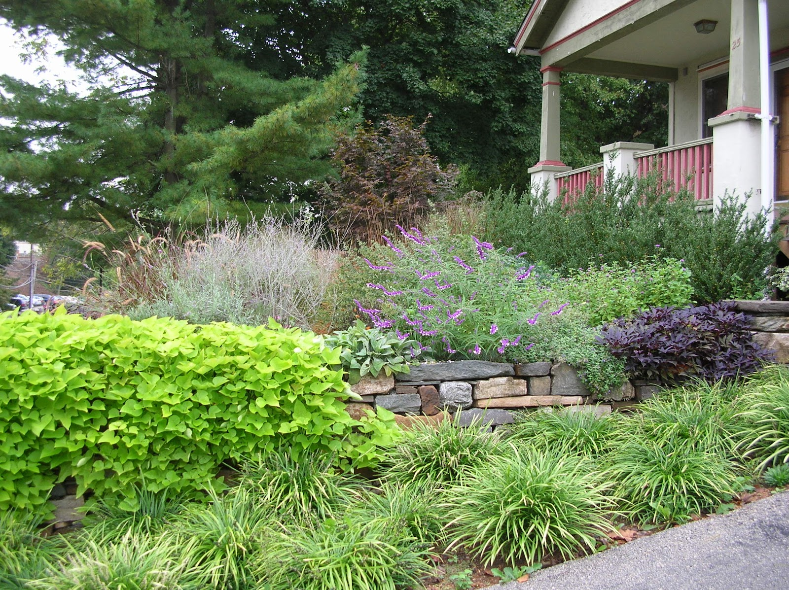 ANTHONY DUFOUR GARDENS: Entry Gardens
