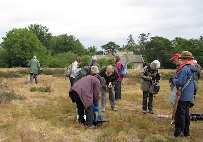 The group starting to spread out on Keston Common, 28 May 2011.
