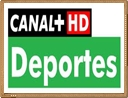 canal plus deportes en directo gratis por internet