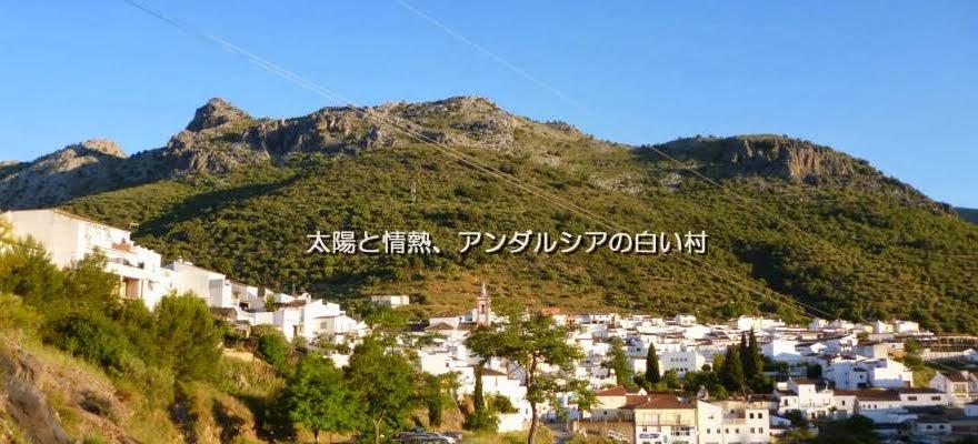 太陽と情熱、南スペインの白い村        コルテス・デ・ラ・フロンテーラ便り