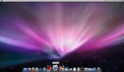 Linux OSX like Ubuntu 10.04 LTS Screenshot%2B%25285%2529