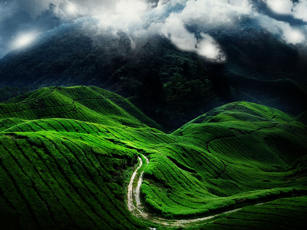 wallpapers: Windows 7 Nature Wallpapers