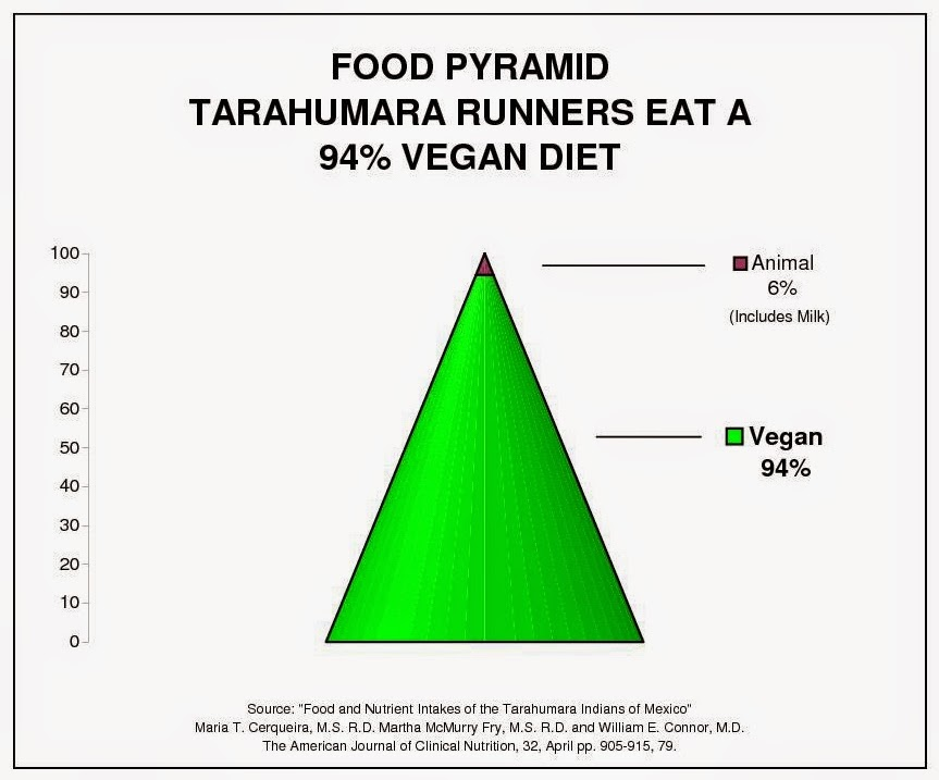 Food pyramid graph of Tarahumara runners of Copper Canyon Mexico, similar to the Kenyan Kalenjin Tribe, and the Ethiopian marathon winners. Opposite diet of the Inuit, Maasai Masai tribe, Atkins, lowcarb, paleo and crossfit.