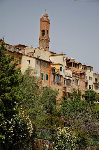 Montalcino in spring