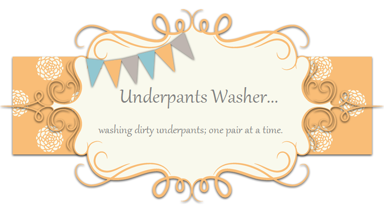 Underpants Washer