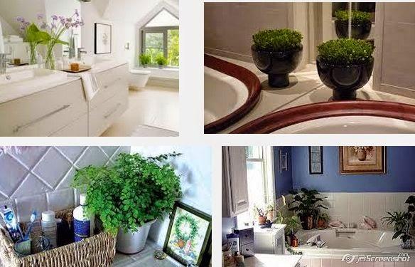 decorar baño con plantas