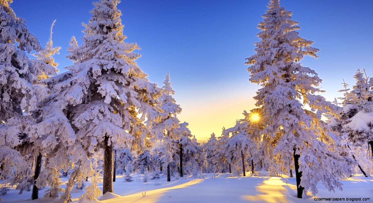 Free Windows Wallpaper Winter
