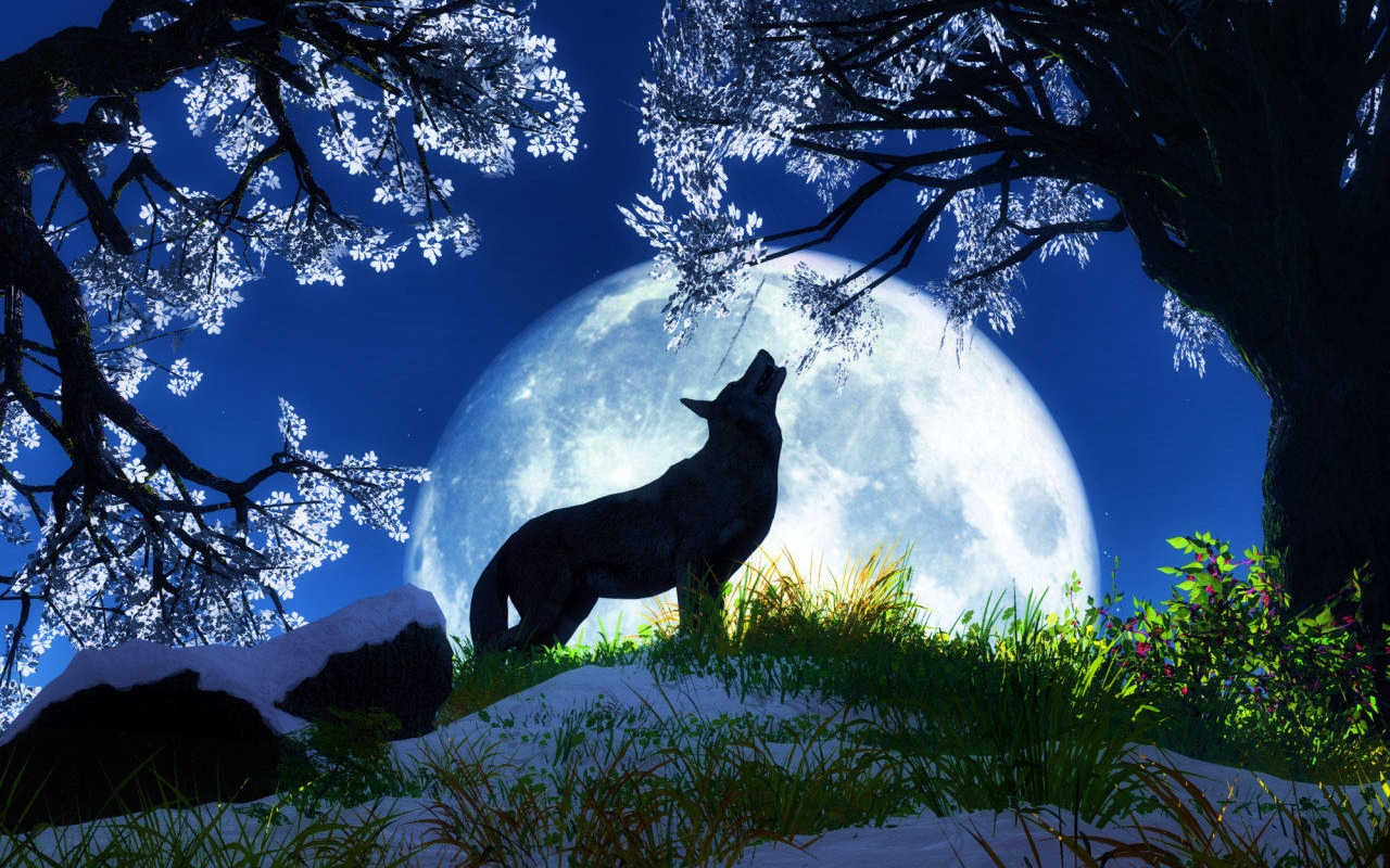 really cool wolf wallpapers - photo #29