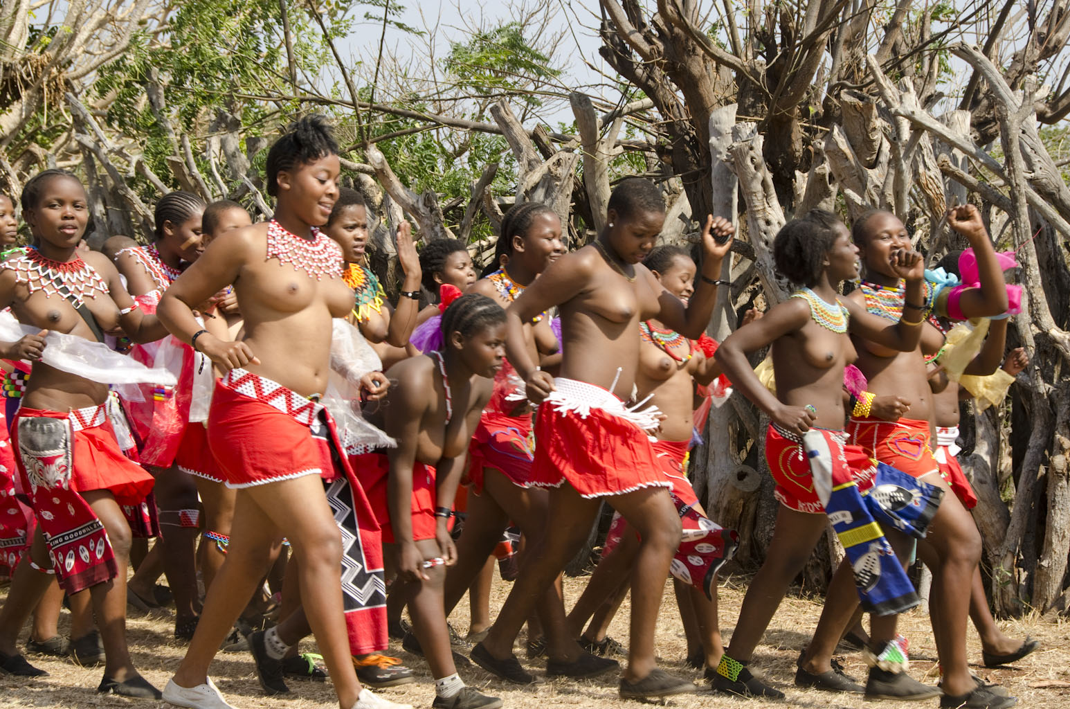 South african reed dance girls apologise