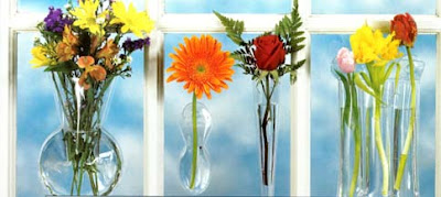 window vases