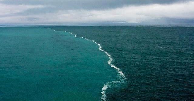 2 ocean meet but do not mix foods