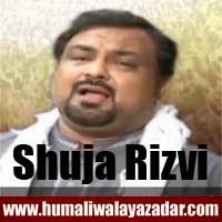 http://ishqehaider.blogspot.com/2013/11/shuja-rizvi-nohay-2014.html