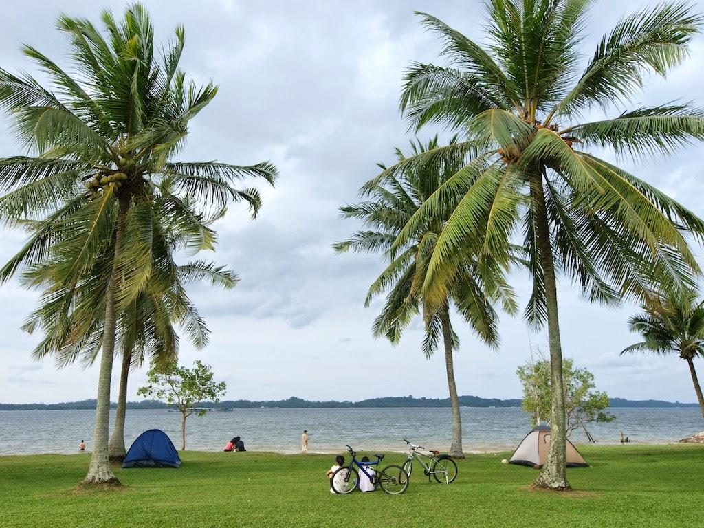 coco palms pasir ris by cdl april 2014