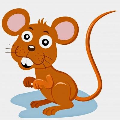 perky mouse rat