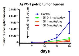 15K によるスイゾウ癌の (骨盤への) 転移抑制