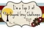 I won Top 3 at Beyond Grey Challenges