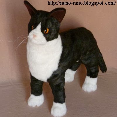 Socks cat