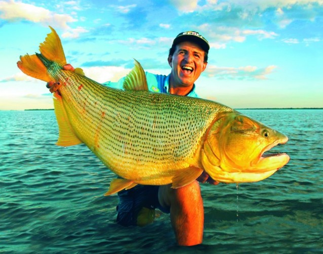 Record Dorado Big Fishes of the Worl...
