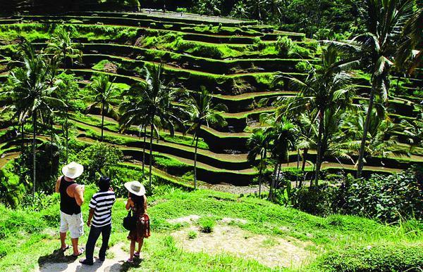 Desa Wisata Candirejo Jawa Tengah 5