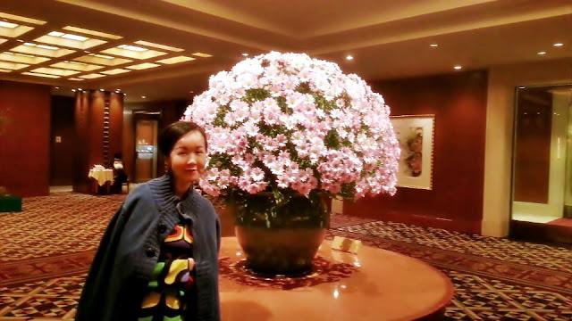www.meheartseoul.blogspot.com | Imperial Hotel Osaka