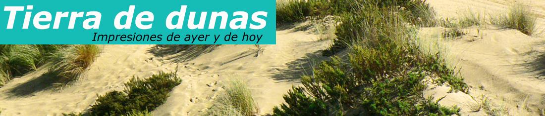 Tierra de dunas