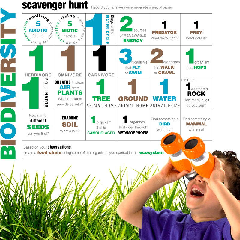 e is for explore biodiversity scavenger hunt. Black Bedroom Furniture Sets. Home Design Ideas
