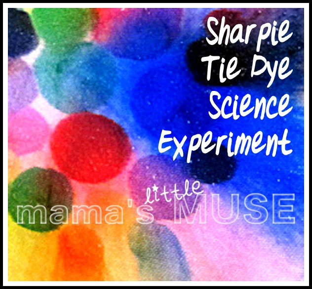 Dyeing Fabric With Sharpies Sharpie Tie Dye Science