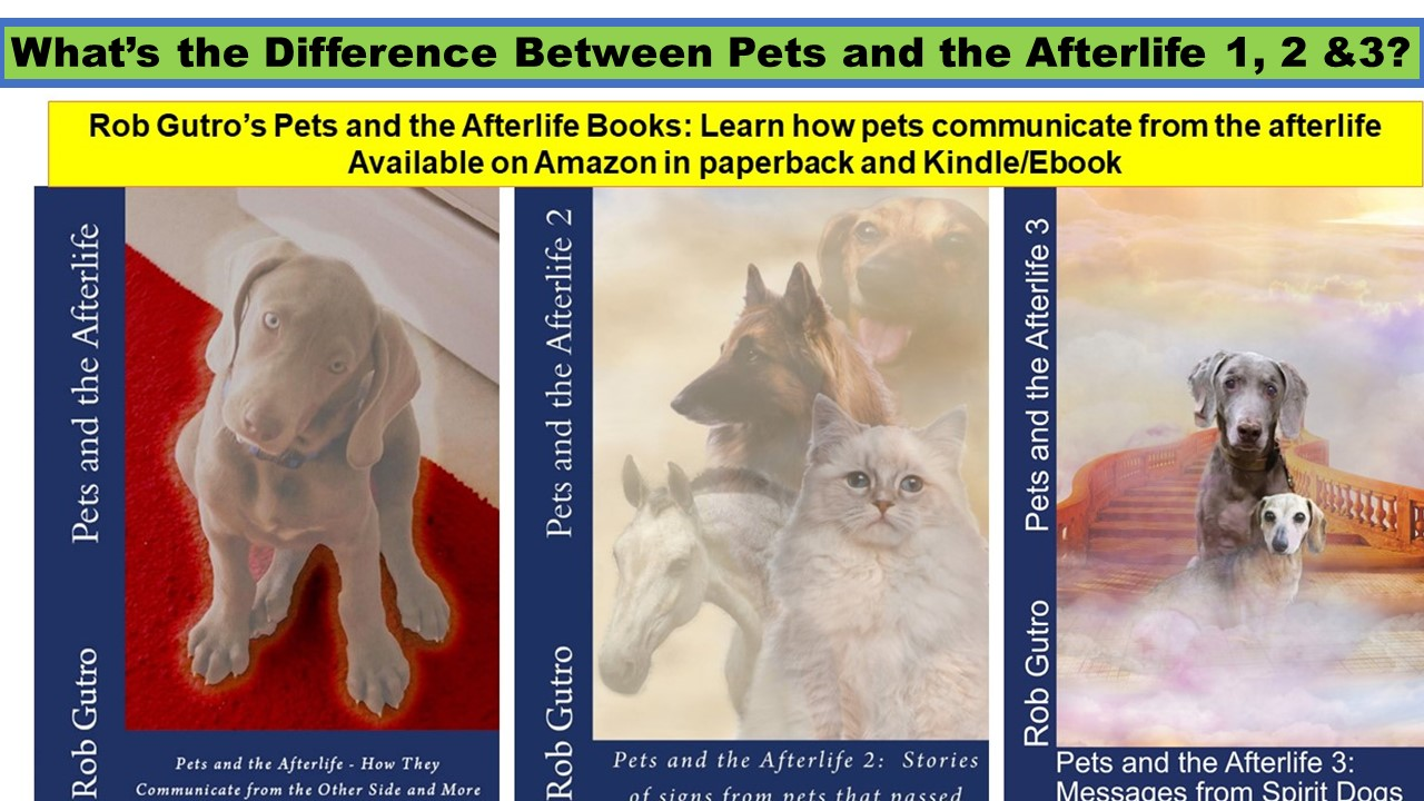 What's the Difference Between Pets and the Afterlife 1, 2 and 3