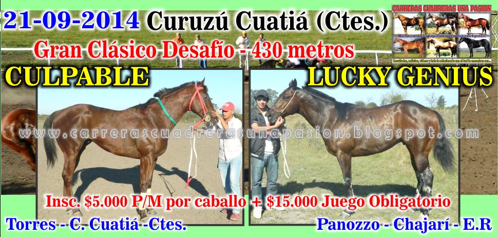 C. CUATIA - CLASICO 430