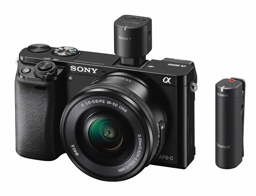sony a6000 nex-6 replacement