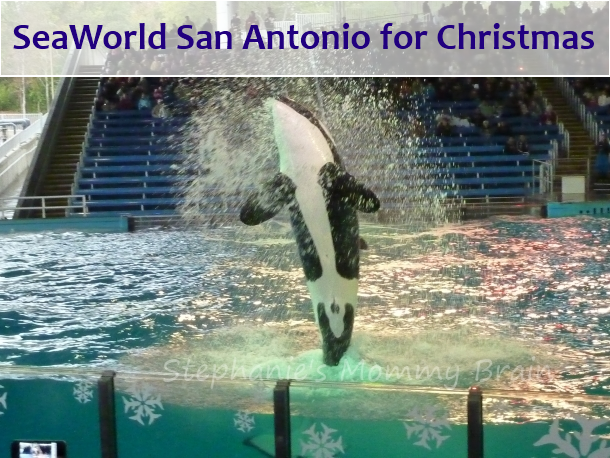 photo about Seaworld San Antonio Coupons Printable named Foodstuff discount coupons for seaworld san antonio - Goibibo bus discount coupons