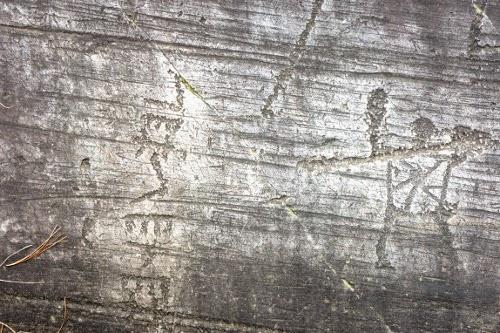 Scritta in alfabeto etrusco e guerriero con un sole sul torace