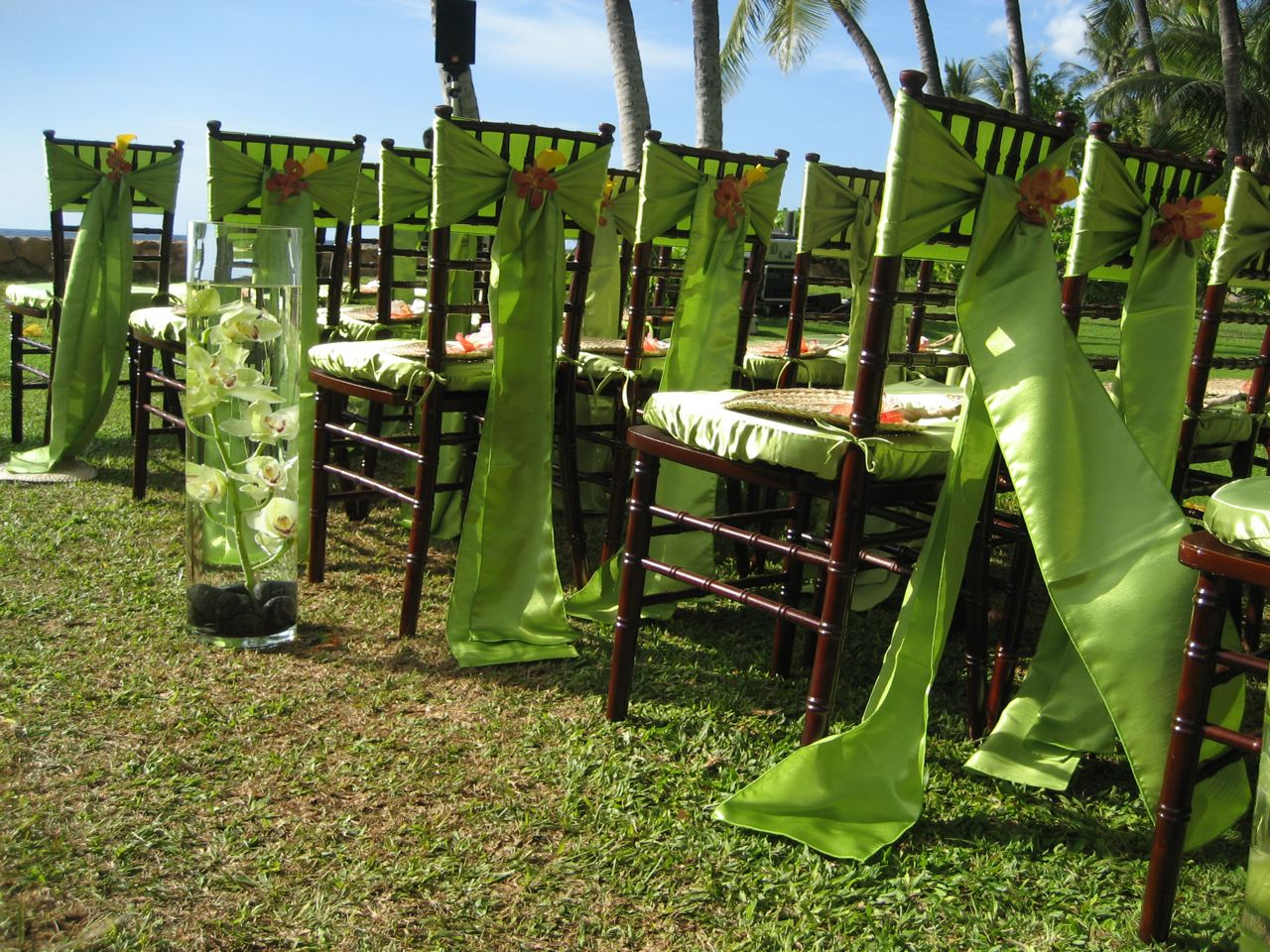 http://3.bp.blogspot.com/-rSn9hm_rMcs/T3dKam1uhZI/AAAAAAAABBg/v670ECwdlKk/s1600/chairs-with-no-covers-just-bows1.jpg