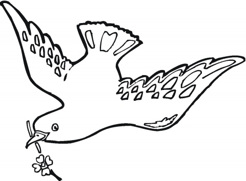animals coloring pages picture pigeons