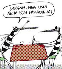 Combater a Dengue é Combater o Criadouro.
