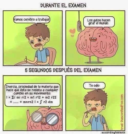 Humor de examenes