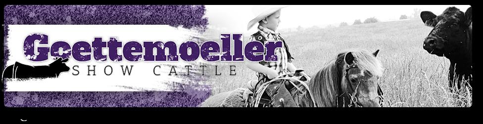 Goettemoeller Show Cattle