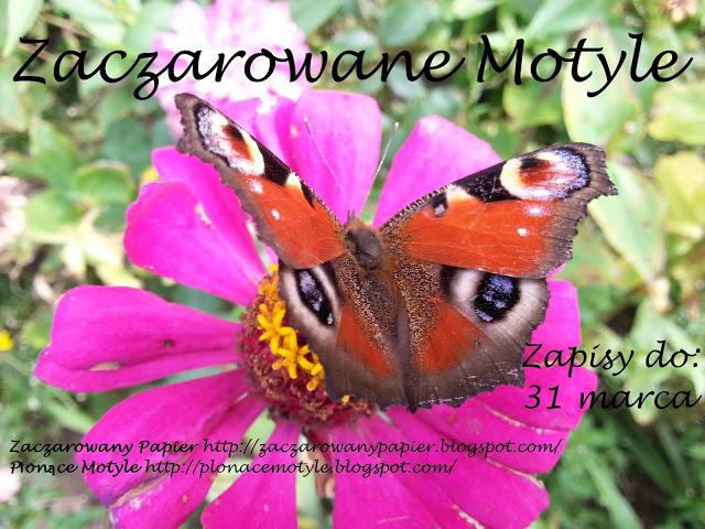 Candy Zaczarowane Motyle