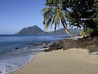 Background Ocean Scene5